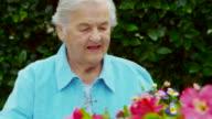 ELDERLY WOMAN TRIMMING FLOWER GARDEN