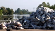 VIEW OF SAND BAGS ON RIVERBANK