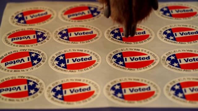 I VOTED PAW