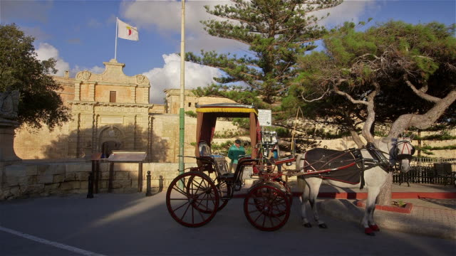 HORSE AND CARRIAGE AT ENTRANCE OF CITY