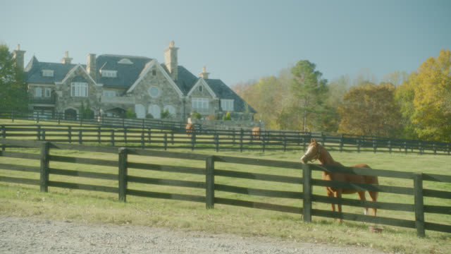 WIDE ANGLE OF HORSES IN FENCED PASTURES. MEADOWS. UPPER CLASS HOUSE OR MANSION IN BG.