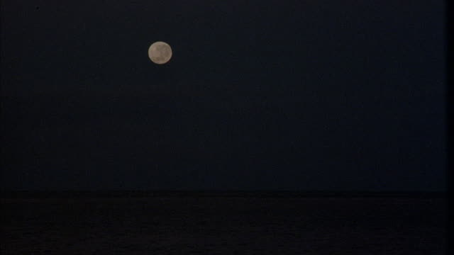UP ANGLE OF SMALL FULL MOON IN TOP OF FRAME.
