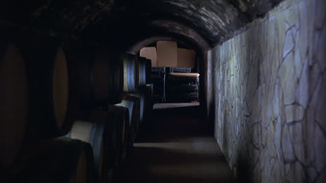 HAND HELD WALKING POV THROUGH WINE CELLAR OR BASEMENT. STONE BUILDING AND BARRELS.