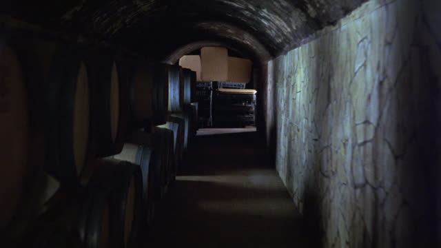 HAND HELD WALKING OR RUNNING POV THROUGH WINE CELLAR OR BASEMENT. STONE BUILDING AND BARRELS.