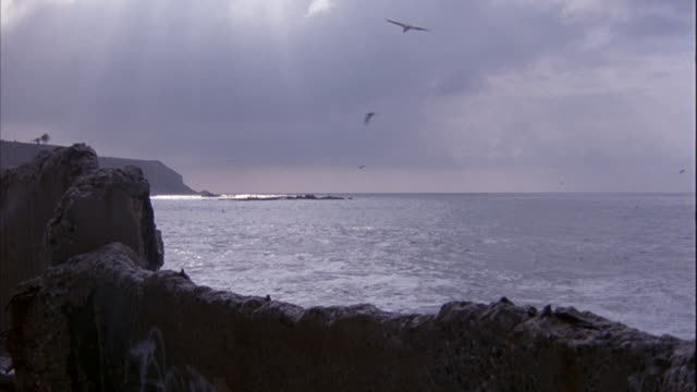 WIDE ANGLE OF OCEAN AND SHORE, COULD BE INLET. SHORE GOES FROM FOREGROUND TO LEFT. SEVERAL BIRDS FLY AROUND.