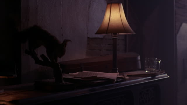 MEDIUM ANGLE OF HOME INTERIOR.  A STUFFED TAXIDERMY SQUIRREL ON A WOOD DESK NEXT TO AN OLD FASHIONED LAMP. VARIOUS PAPERS ON THE MESSY DESK.  AN EMPTY GLASS, MAYBE A BEER MUG.  A WOOD CASE, MAYBE A VIOLIN.