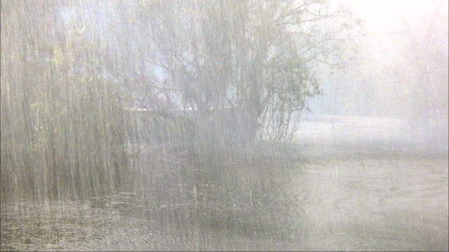 MEDIUM ANGLE MOVING POV THROUGH RIVER OR SWAMP WITH HEAVY RAIN OR STORM. MOVES AHEAD TO VIEW POSSIBLE AIRBOAT BEHIND TREE.