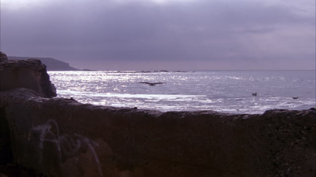 MEDIUM ANGLE OF ROCK WALL IN FOREGROUND BY SHORE WITH WAVES HITTING ON ROCK WALL. PANS RIGHT AS FLOCK OF STORKS FLY TO RIGHT. OCEAN HORIZON IN BACKGROUND.