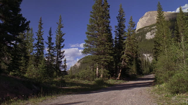 WIDE ANGLE OF NARROW MOUNTAIN ROAD AREA. MOUNTAINS IN BACKGROUND. TREES.