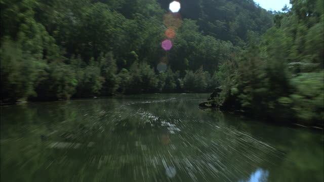 AERIAL OVER WIDE FLOWING RIVER FLANKED BY DENSELY TREE COVERED MOUNTAINS. SEE POV FLYING AGAINST RIVER CURRENT. SEE SUN GLISTEN FLOWING WATER. SEE LENS FLARE FROM SUN AT TOP. SEE CLEAR BLUE SKY.