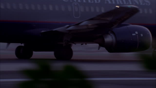 TRACKING SHOT OF UNITED AIRLINES AIRPLANE TAKING OFF FROM RUNWAY AT AIRPORT. SEE ORANGE SUN IN BACKGROUND. COULD BE ANY AIRPORT. VIEW PARTIALLY OBSCURED BY PLANTS.