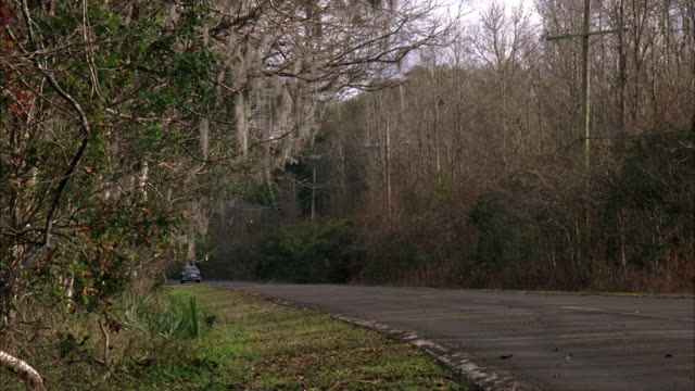 WIDE ANGLE OF A TWO LANE RURAL ROAD. THE WOODS AND TREES ON THE SIDE OF THE MUDDY STREET.  A BLACK SEDAN CRUISE DOWN THE ROAD. CLASSIC CARS. SPANISH MOSS