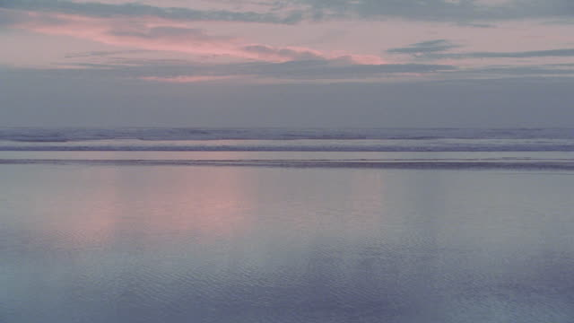 WIDE ANGLE OF BEAUTIFUL BEACH AND OCEAN VISTA. CLOUDY SKY SLIGHTLY PINK AND REFLECTED ON BEACH. OCEAN MOVES LEFT TO RIGHT. DOG RUNS THROUGH FRAME RIGHT TO LEFT. SAND. SHORES.