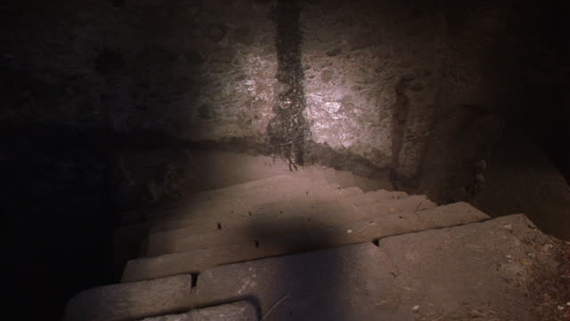 MEDIUM ANGLE OF STAIRWELL WHICH LEADS DOWN INTO STONE BASEMENT WITH WATER SEEPAGE AND DIRT FLOOR.