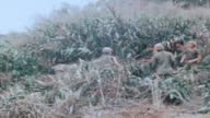 MONTAGE 101st Airborne Division soldiers cutting down jungle brush with machetes / Vietnam