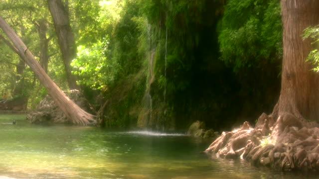 HD 1080i Lush Natural Springs