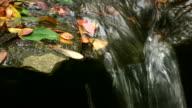 HD 1080 i Stream über Steine mit Blätter 3