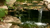 HD 1080i Stream over Rocks with Leaves 4