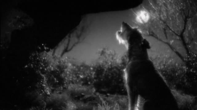 1930s medium shot dog howling / full moon in background