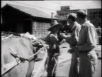 1940s MONTAGE soldiers speaking with a civilian standing beside a yoked ox / Japan
