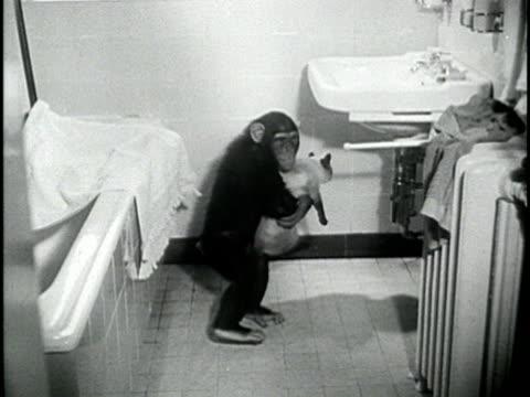 Trina Un Remodels Her 1980s Bathroom Res Its 1950s Glory And. 1950s bathroom sink   Bathroom Design Ideas