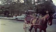 1950s MONTAGE Horse and carriage in Jackson Square, New Orleans, Louisiana, USA