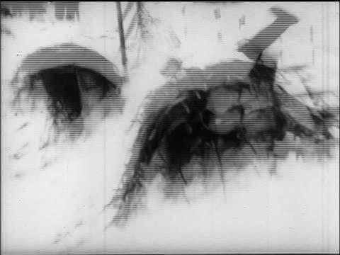 B/W 1960s SHAKY tobogganer crashing into bush snowbank / Villach Austria / educational