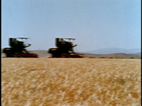 1970s MONTAGE Harvesting scene with farmer and animals / Los Angeles, California