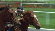 1980s CU POV Horse race