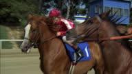 1980s MS POV Horse race