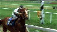 1980s REAR POV WS Horse race