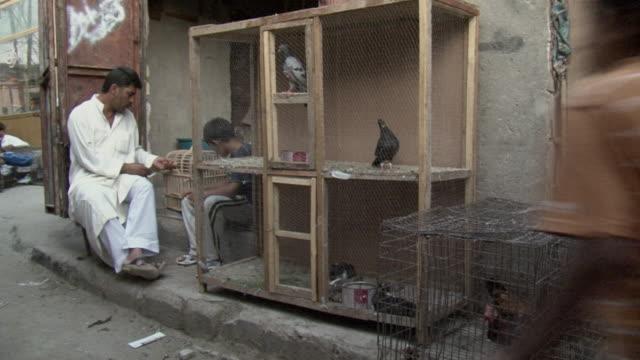 20th Jul 2009 WS Stall with pigeons in Souk Al Safaseer market / Baghdad Iraq