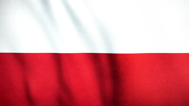 4k Highly Detailed Flag Of Poland - Loopable