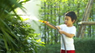 4K:Cute little boy watering on the tree.