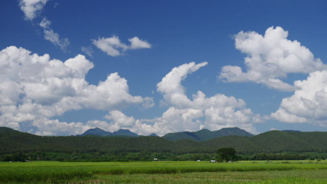 4K:Meadow green field and cloudy blue sky time-lapse movement