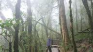 4K:Woman trekking in rainforest nature trail , 4k(UHD)