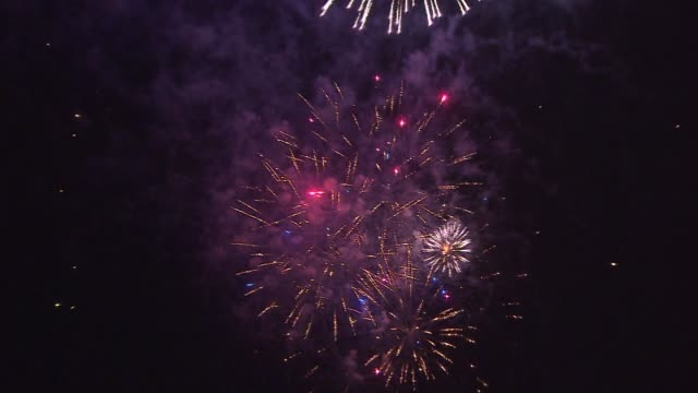 4th Of July Fireworks Over Navy Pier
