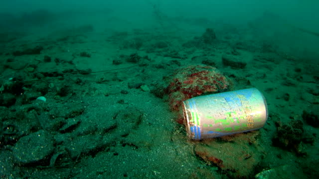 Abandoned beverage bottle floating underwater