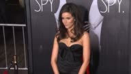 Abigail Spencer at This Means War Los Angeles Premiere on 2/8/12 in Hollywood CA