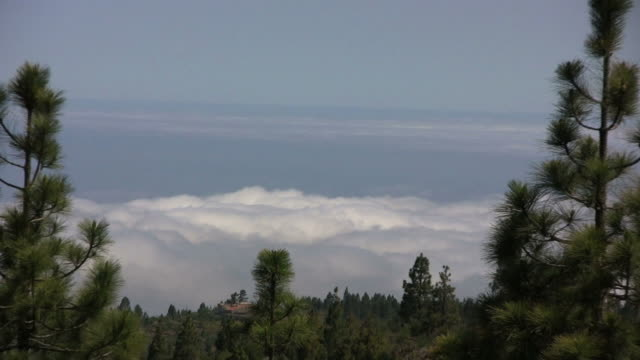 Above the clouds, Teide National Park, Tenerife (Canary Islands) (HD)