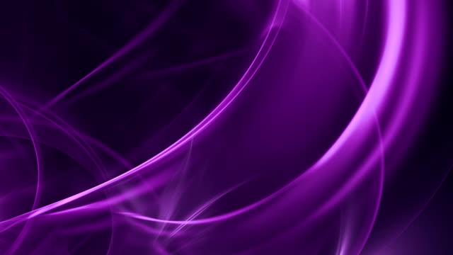 Abstract Purple Curves (Loopable)