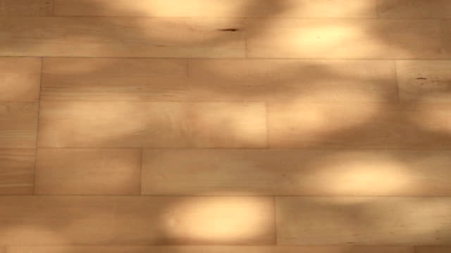 abstract shadow in motion on wood floor