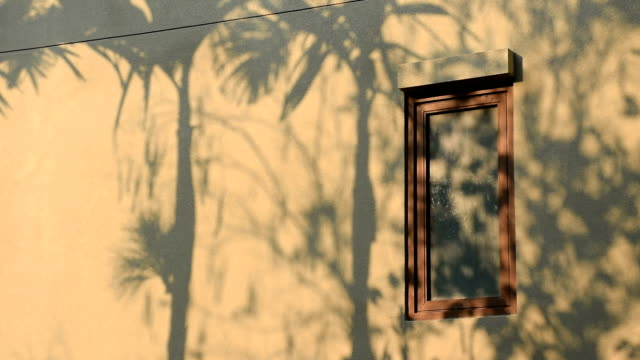 abstract tree leaf shadow in motion on the yellow wall with wooden window