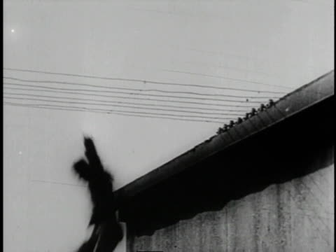 1920 B/W Actor fleeing from police across telephone wires in the silent comedy 'The Yellow Fear'