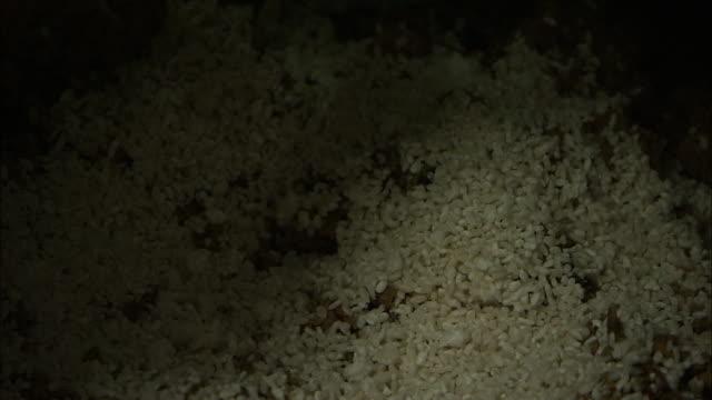 Adding Malted Rice In Nukadoko, Rice Bran Bed, Fukuoka, Japan