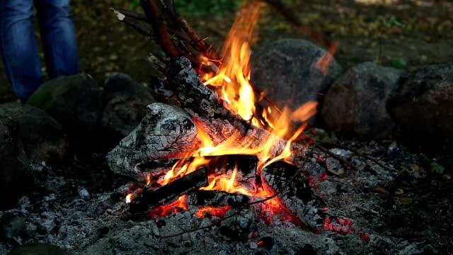 Adding wooden stick to big campfire