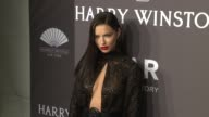Adriana Lima at 19th Annual amfAR New York Gala at Cipriani Wall Street on February 08 2017 in New York City