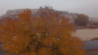 Aerial - Autumn - Trees, leaves and a river 2