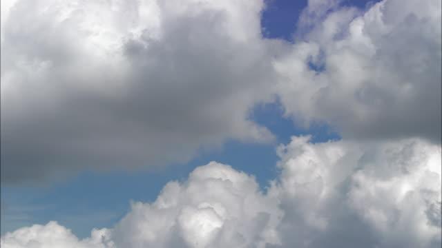 Aerial cumulus clouds
