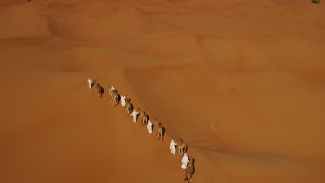Aerial drone of camel train travelling across desert